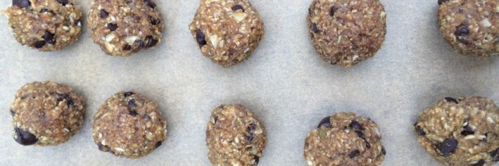 Raw Chocolate Chip Peanut Butter Balls